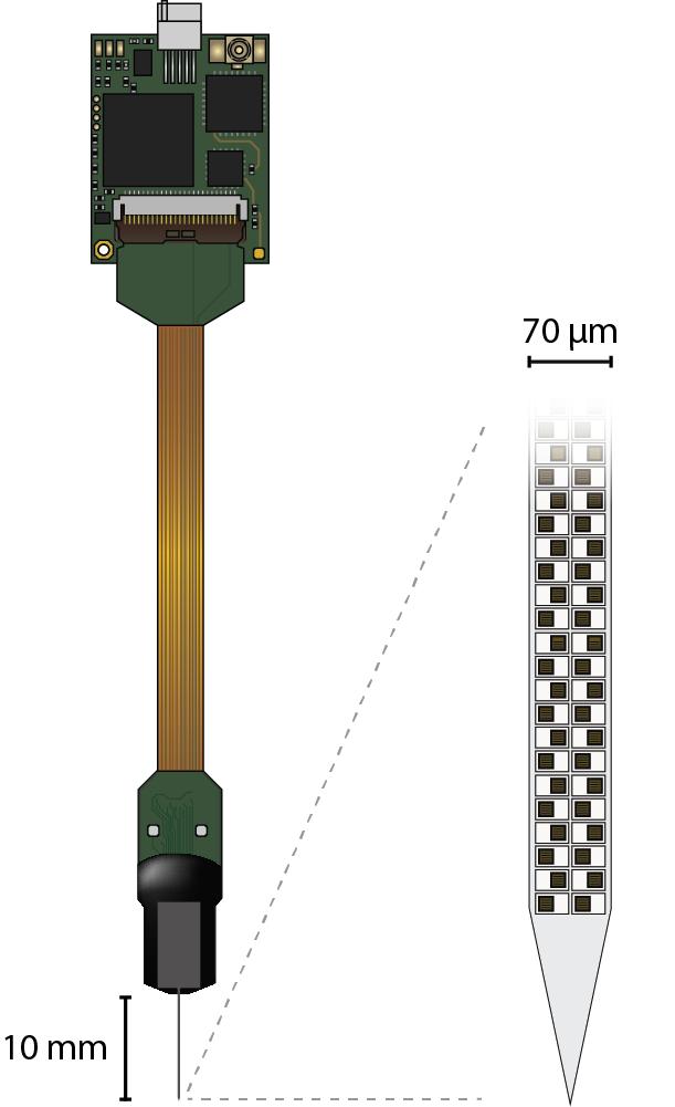NP 1.0 probe